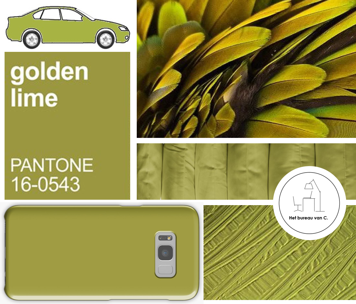 Winter 2017 / 2018: Golden Lime (Pantone)